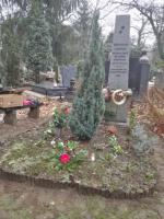 Diószegi sírjánál