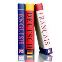 Külföldi Nyelvtanulási Program