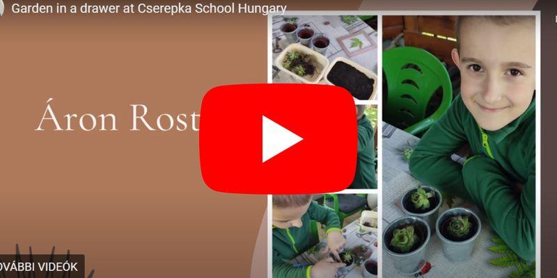Elkészültek minikertjeink az Erasmusban résztvevő olasz csapat kihívására